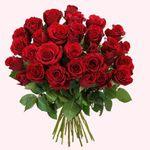 Blumen zum Muttertag ab 20,94€ – z.B. 23 rote Rosen mit 50cm Länge