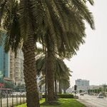 6 ÜN in Dubai inkl. Flug, Frühstück & Transfer ab 467€ p.P.
