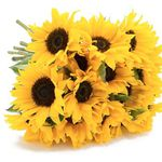 12 Sonnenblumen mit je 60cm Länge für 18,94€