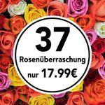 37 Rosen in Überraschungsfarbe für 22,98€