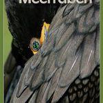 Meerraben (Kindle Ebook) kostenlos