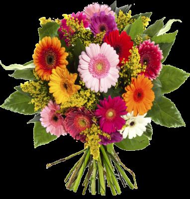 Blumenstrauß Chic   verschiedene Gerberas für 24,90€