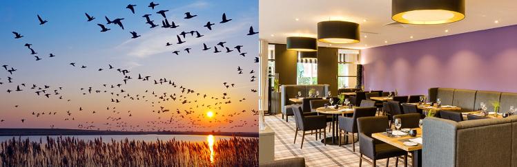 2, 3 o. 5 ÜN im 4* Hotel in Ostfriesland inkl. Frühstück, 4 Gänge Dinner, Teezeremonie, Wellness & mehr ab 109€ p.P.