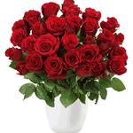 """Update! Rosenrausch – 33 Rosen """"Red Edition"""" für 20,94€"""