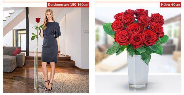 Rosen Sträuße ab 17,99€ + keine VSK bei LIDL Blumen