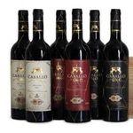 6 Flaschen Selección de Bodega in Holzkiste für 45,94€