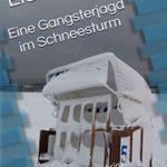 Eiskalte Jagd (Kindle Ebook) kostenlos