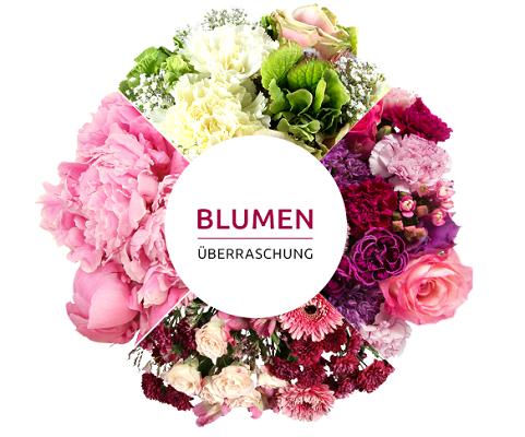 Miflora Blumenüberraschung für 22,90€