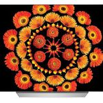 LG OLED55C7D – 55 Zoll 4K OLED Fernseher für 1.888€