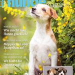 1 Ausgabe des Schweizer Hundemagazins gratis – endet automatisch