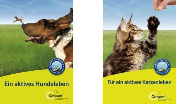 Hunde  und Katzenratgeber kostenlos anfordern