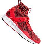 PUMA Ignite evoKNIT Fierce Unisex Sneaker für je 47,99€