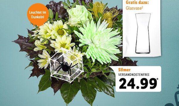 Nur heute! Alle Blumen mit 13% Rabatt bei LIDL Blumen + keine VSK