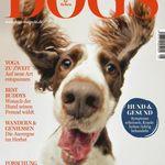 DOGS Magazin für Hundebesitzer im Jahresabo für 35,40€ + 30€ Gutschein