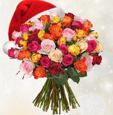 45 bunte Rosen mit 50cm Länge für 24,94€