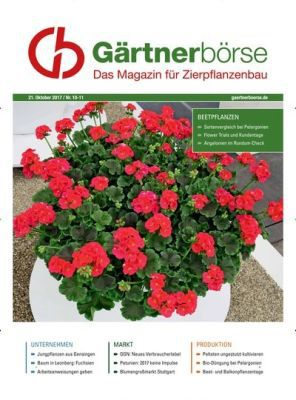 Gärtnerbörse Ausgabe 46/2017 (ePaper) gratis
