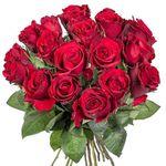18 langstielige rote Rosen für 13,99€