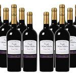 12 Flaschen Castillo Santa Paulina – Carmenère Reserva (2015) für 39,99€ (statt 81€)