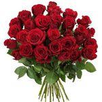 33 rote Rosen + Schoko-Nikolaus für 20,94€
