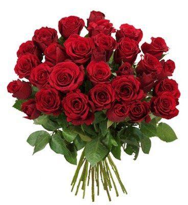 33 rote Rosen + Schoko Nikolaus für 20,94€