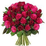 """Blumenstrauß """"Romantic Roses"""" mit 44 pinken und roten Rosen für 24,98€"""