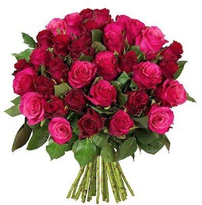 """Blumenstrauß """"Romantic Roses"""" mit 45 pinken und roten Rosen für 24,98€"""