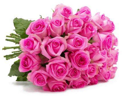 28 Rosen PinkDiamonds für 19,98€