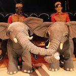Circus Roncalli Tour 2018 Tickets ab 22,50€ bei vente-privee – Auftritte ohne Tiere!