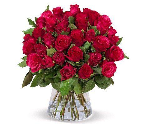 33 rote Rosen mit 50cm Länge für 34,73€