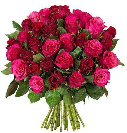 37 Rosen im Strauß RomanticRoses für 24,98€