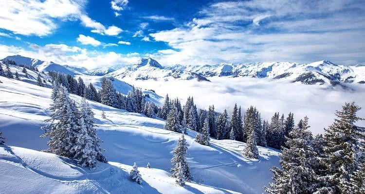 Ski Reisen im Überblick   z.B. 5 ÜN in Nassfeld inkl. Halbpension, Sauna und Schlittenverleih ab 199€ p.P.
