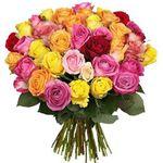 44 bunte Rosen mit 50cm Länge für 24,98€