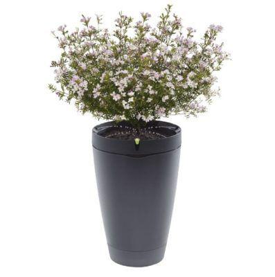PARROT Pot   App gesteuerter Smart Blumentopf für 27,98€