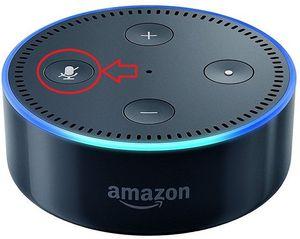 Amazon Echo Datenschutz   wann hört Alexa mit?