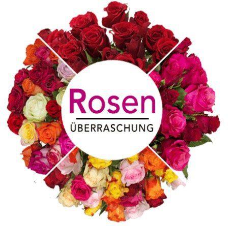 35 Rosen in Überraschungsfarbe mit 50cm Länge für 25,98€