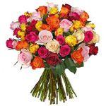 46 bunte Rosen mit Knutschgarantie für 24,98€