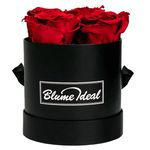 """Infinity Rosenboxen mit 4 """"Ewigen Rosen"""" für 34,98€"""