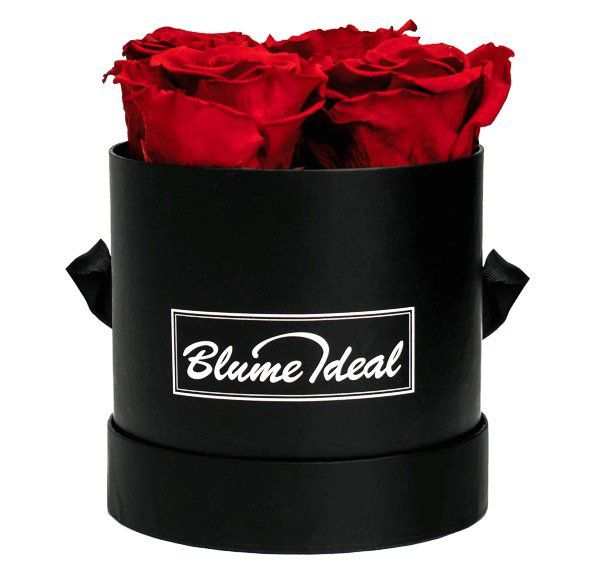 Infinity Rosenboxen mit 4 Ewigen Rosen für 34,73€