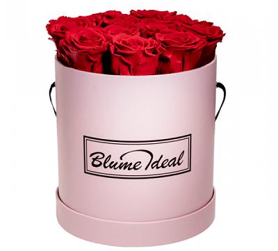 Infinity Rosenboxen mit 4 Ewigen Rosen für 34,98€ oder 12   14 Rosen für 94,98€