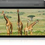 Blaupunkt Atlantis 10.G403 – 10,1″-Tablet mit 16 GB (B-Ware) für 63,90€ (statt neu 116€)