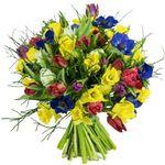 20 bunte Tulpen, 20 Narzissen und 7 Anemonen aufgebunden mit 3 Heidelbeeren für 29,98€