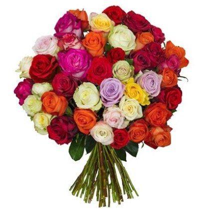 44 Shiny Roses in bunter Ausführung für nur 21,98€