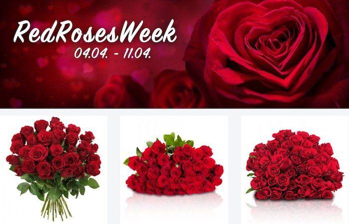 Red Roses Week bei Blume Ideal   z.B. 55 rote Rosen für nur 29,98€