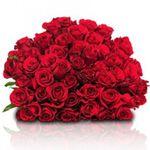 Red Roses Week bei Blume Ideal – z.B. 55 rote Rosen für nur 29,98€