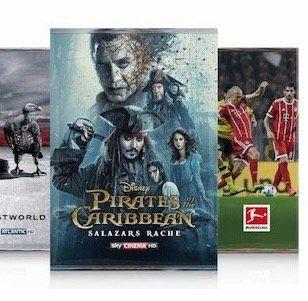Sky komplett (Entertainment, Buli, Sport, Cinema) + HD Paket + HD Receiver nur 29,99€ mtl.
