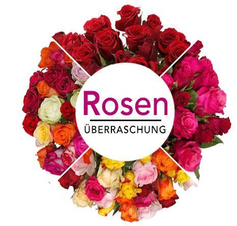 Rosenüberraschung: 44 bunte Rosen [Fairtrade] für 24,98€