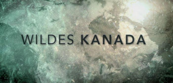 Abenteuer Erde: Wildes Kanada (Doku) kostenlos in der WDR Mediathek