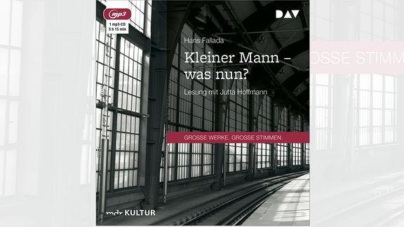 Hans Fallada   Kleiner Mann – was nun? (Hörbuch) kostenlos