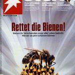 Stern Jahresabo für 265€ inkl. 230€ Bestchoice Gutschein