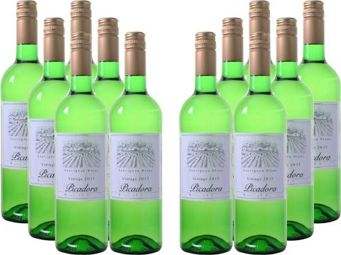 12er Paket Picadora   Sauvignon Blanc   Central Valley für 45€